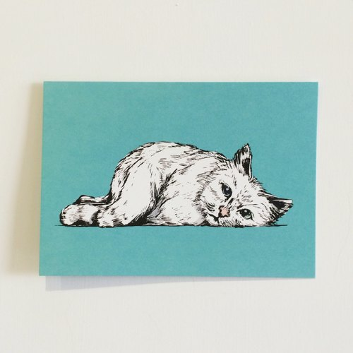 White cat million postcard / card