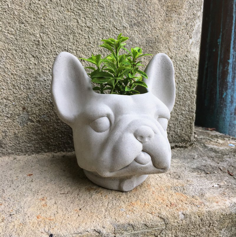 French bulldog / Cement Pot