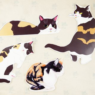 Three cute cat stickers