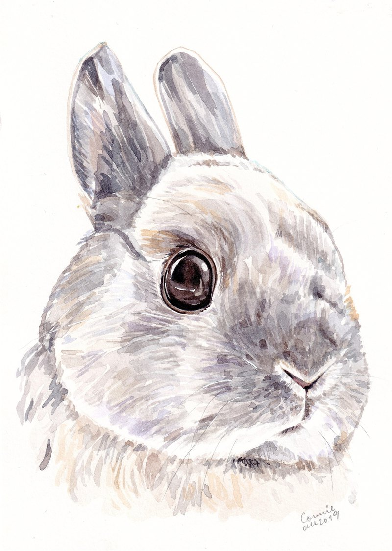 "Original Watercolour Painting (7.5"" x 5.5"") - Bunny"