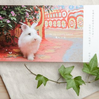 Rabbit Photography Illustration Postcard - Magical Journey