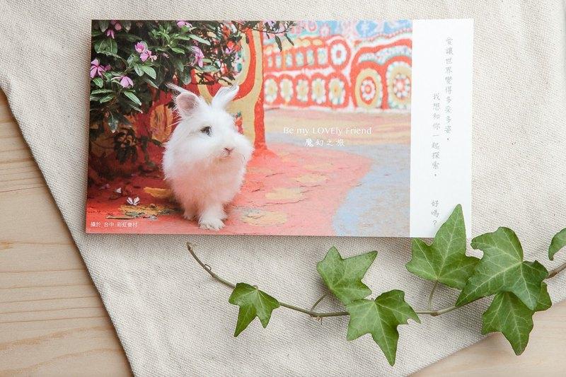 兔子攝影插畫明信片 - 魔幻之旅