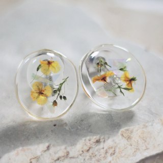 / Current / Dry Flower Specimen Resin Earrings