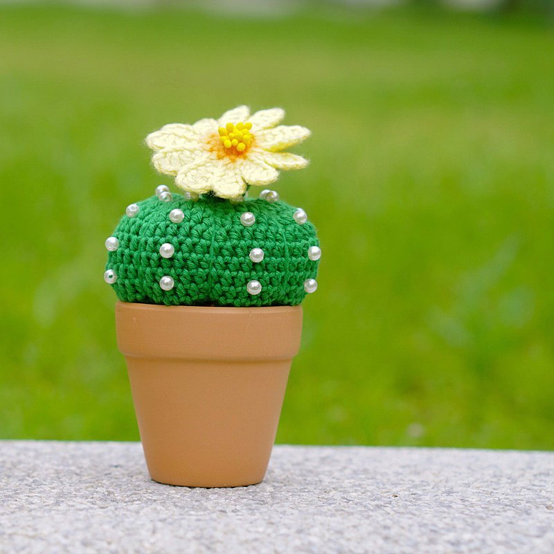 Astrophythum asterias nudum Handmade crochet cactus  in terracotta pot homedecor