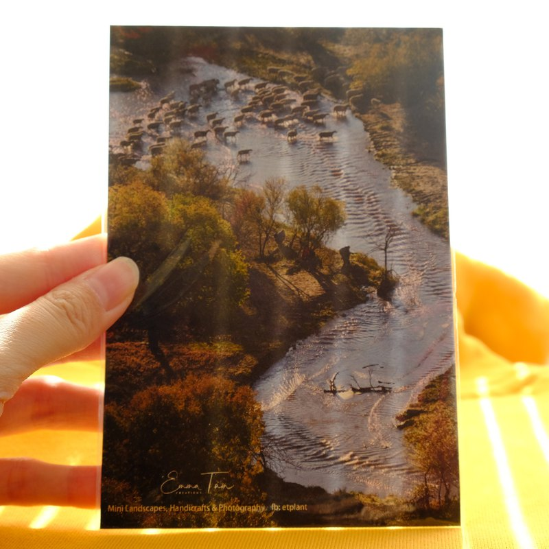 [Sheep crossing the river] Heart card postcard on both sides of the ink-absorbing cotton paper