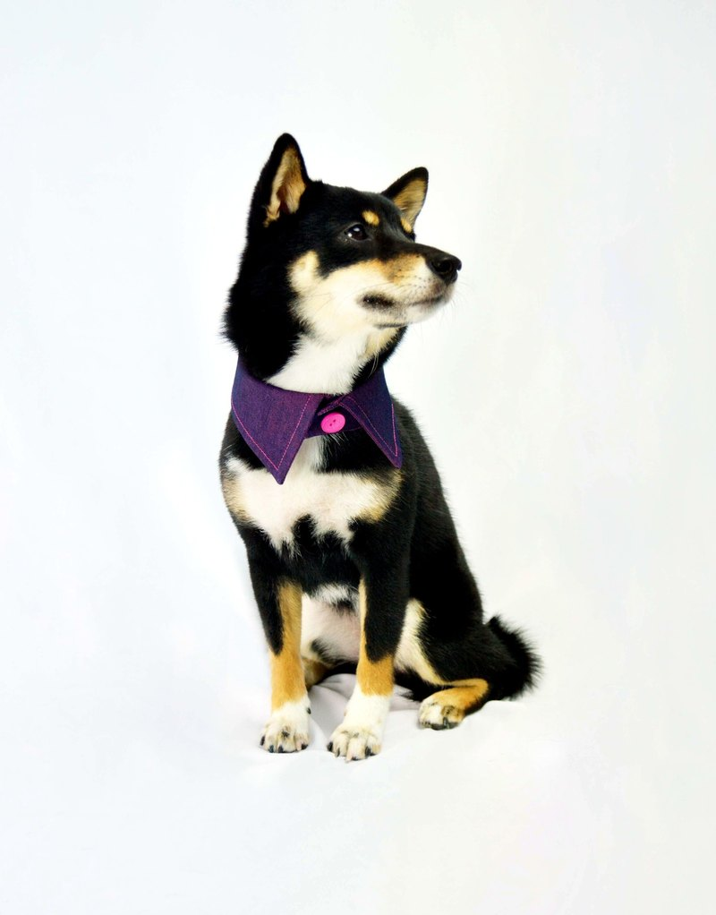 Pets sided shirt collar - Peach Purple PK (XL / 2XL / 3XL)