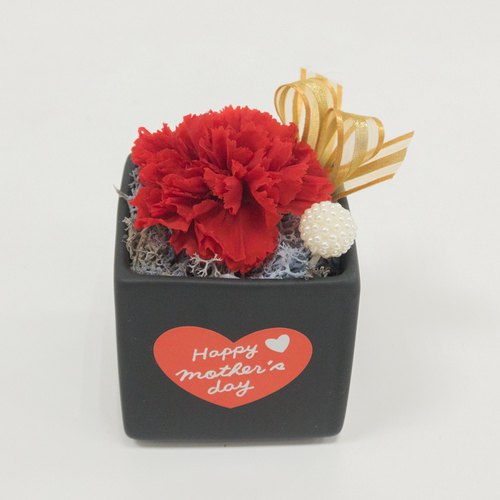 Kinki Handmade I Love Mommy No1 Love Red Limited Eternal Flowers Flower Potted Mother's Day