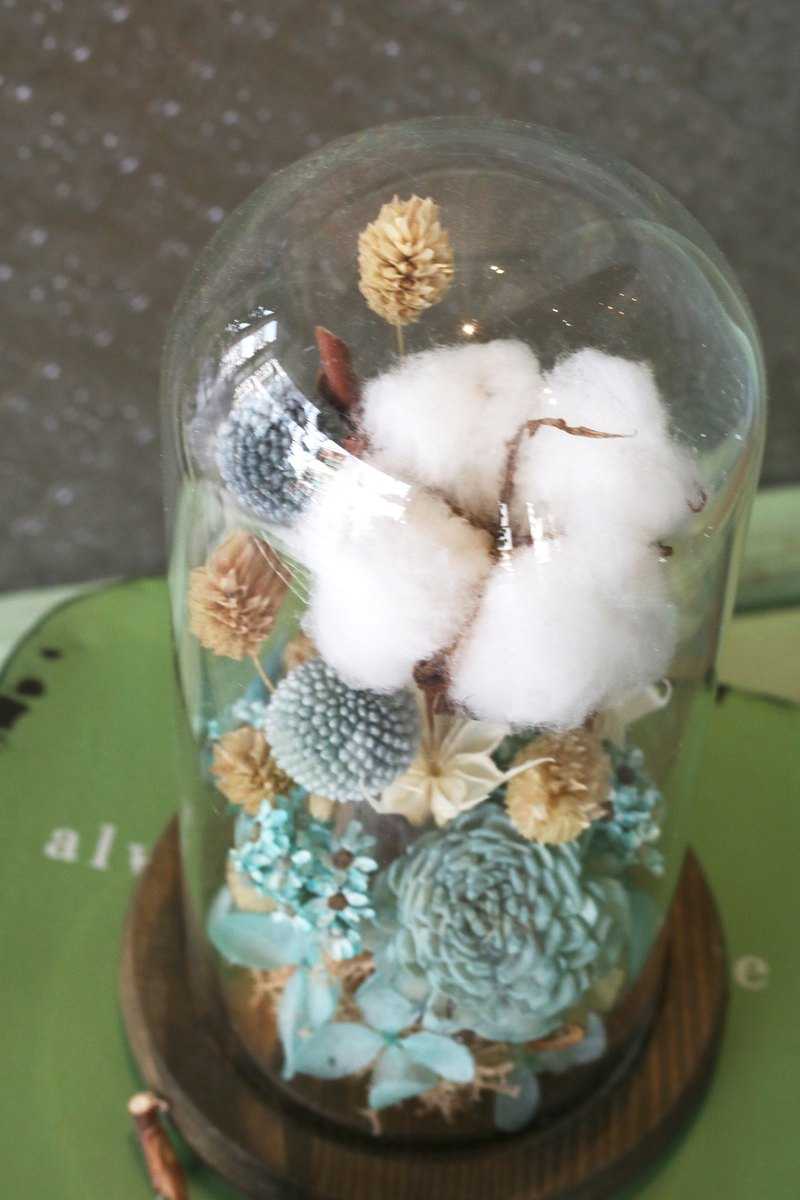 FLORA Dry Cotton Glass Room Healing Decoration
