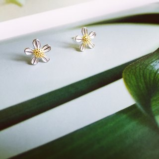 925 sterling silver two-color cute [flower series salty grass flower ear]