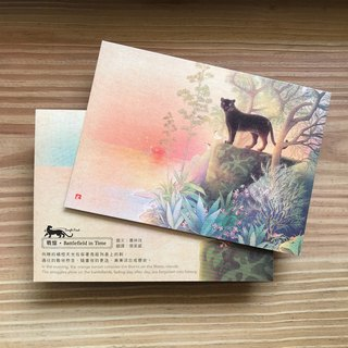 Jungle Find jungle to find / Jungle Habitat seek Postcards / - [war Yi]