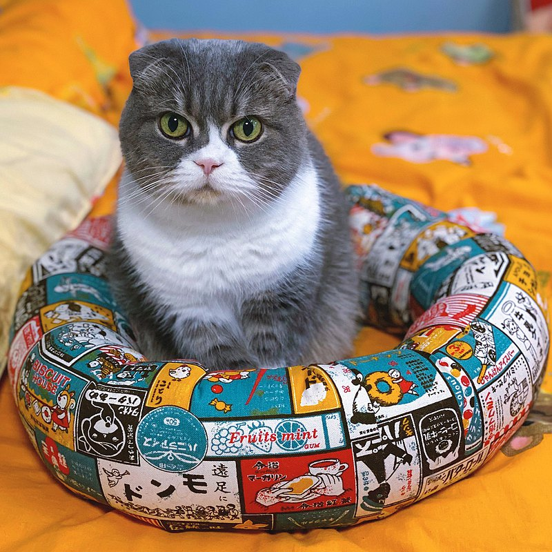 Donut cat bed with pet bed
