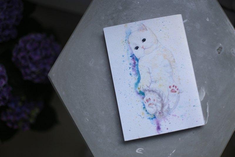 空白筆記本 NB-A5-010 白貓
