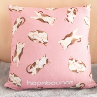 Cat Cushion Cover/ Plush Pillow/ Kitten print double sided cushion/animal cute