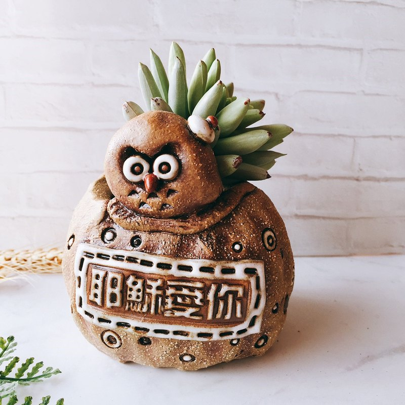 P-68 Blessing Eagle│Yoshino Hawk x Owl Gospel Flower Handmade Pottery Succulent Healing Cute Unique Gift