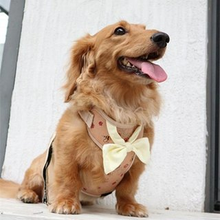 Pet chest back / chest strap small bee bow tie