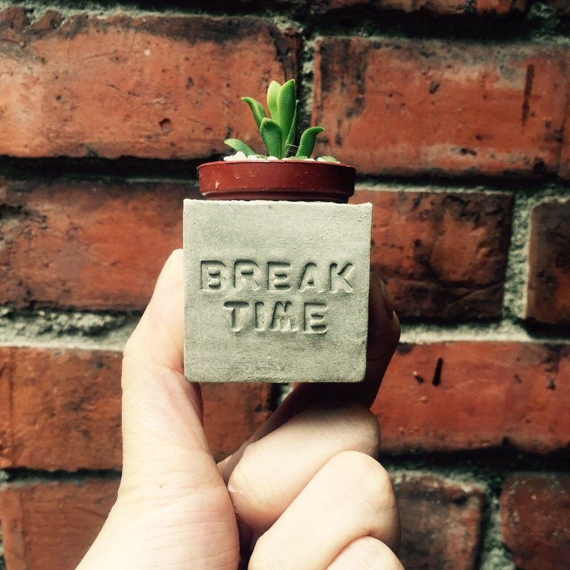 Break Time rest ~! Magnet potted succulents