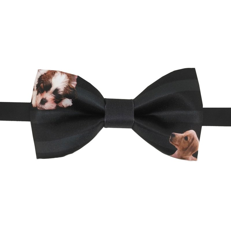 Cute dog bow tie, black bow tie, necklace,
