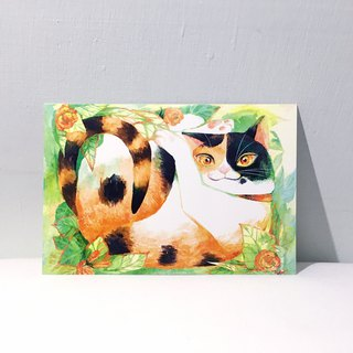 Spirited Tricolor Cat/Double-sided Postcard postcard
