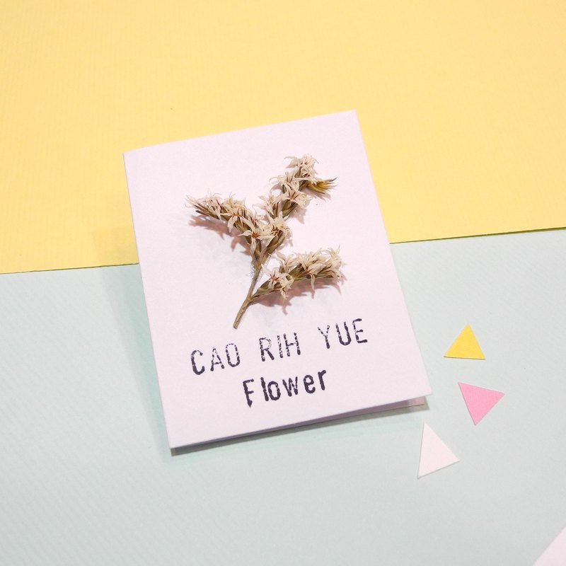 Mini dry flower card