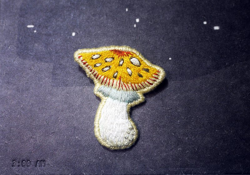 [Mermaid marine mushroom] handmade embroidery / brooches / mushrooms
