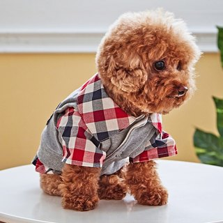 Pet clothes college wind jacket