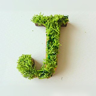 "Wooden alphabet objects (Moss) 5cm ""J"" × 1 point"