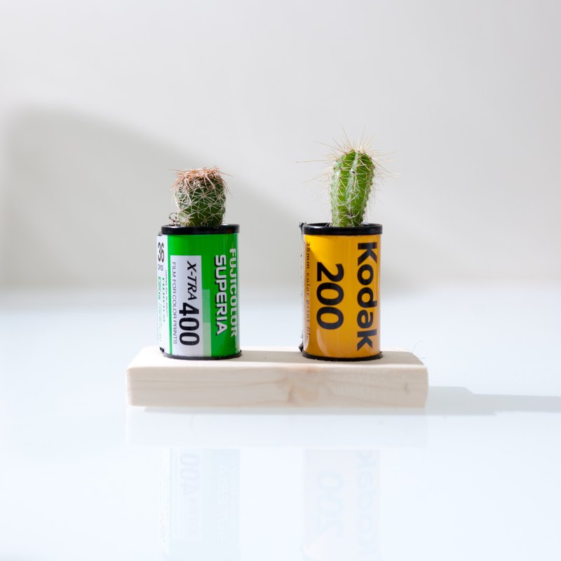Film cans cactus (a set of two into the base)