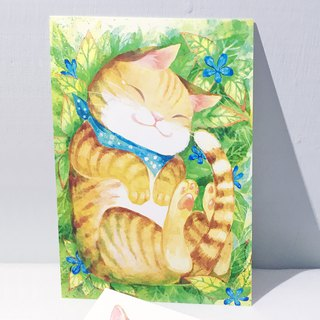 Lazy soft orange cat / double-sided postcard postcard