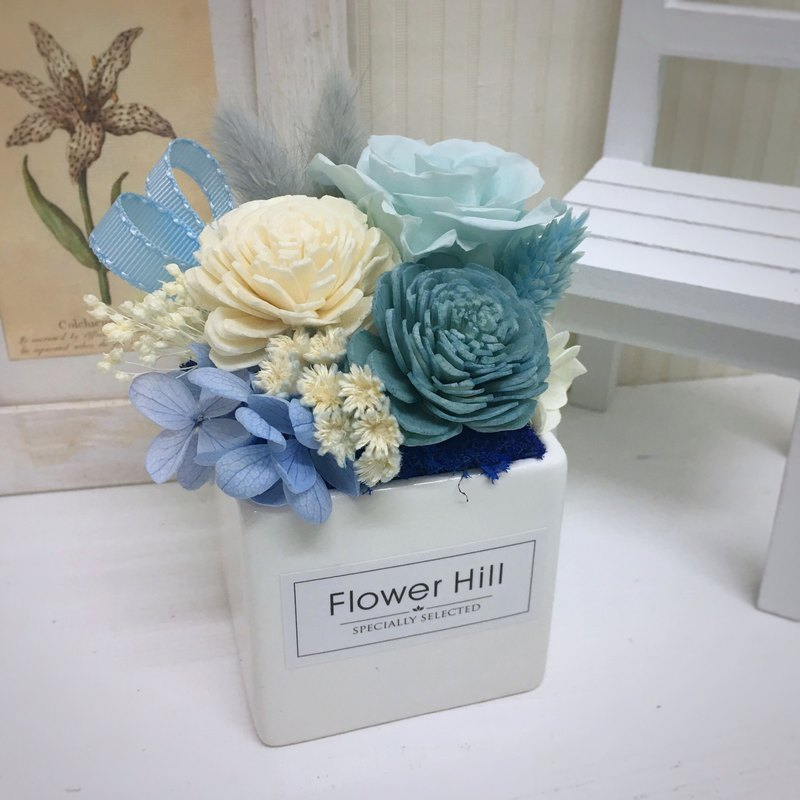 Alice Blue Fantasy - Potted / Table Flower / Dry Flower / No Withering / Spreading Flower / Valentine's Day / Graduation