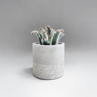 GRANITE Medium cylinder concrete planter / pot for Succulent & Cacti
