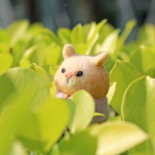 Anny Wool Felt Powder University T Golden Hamster