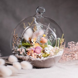 Sweet Dream Flower Dream Asteroid - Multi-Flest Dry Flower Glass Ball Material Pack