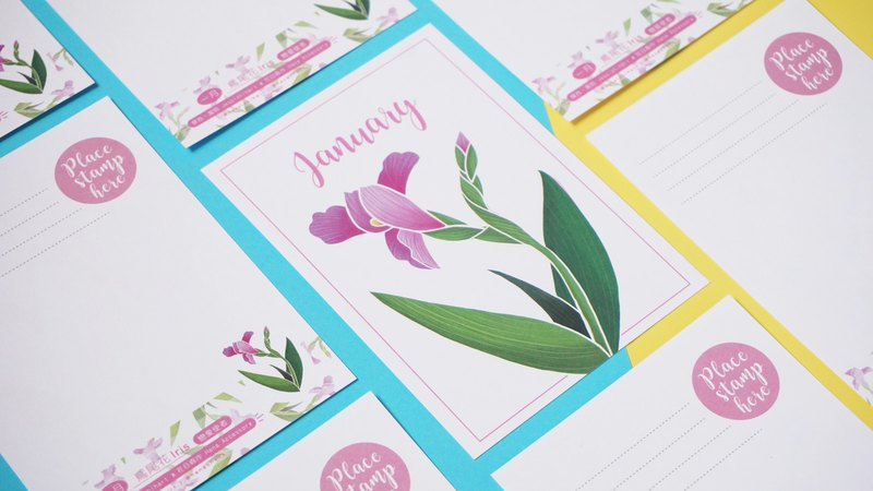The Birth Flower Postcard - January lris