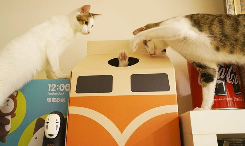 Train cat house + cat bell cat cat special offer cat cat house cat bell combination