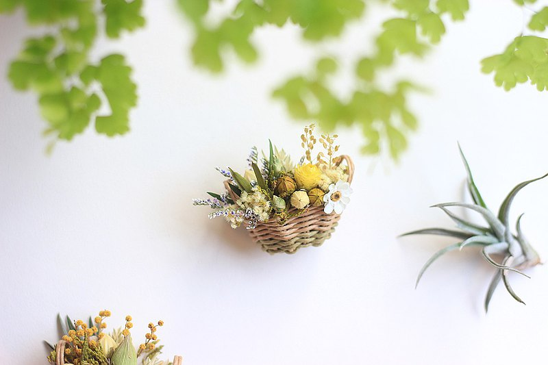 Magnet small flower basket ‧Dry flower ‧Acacia ‧Graduation gift ‧Graduation bouquet ‧Mini ‧Weave
