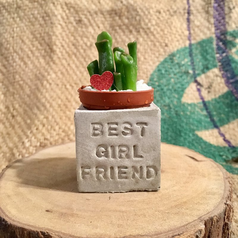 Best girlfriend magnet succulent potted