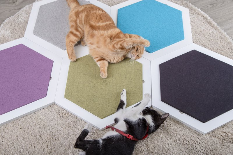 MUZOO Hex Cat Cat Board