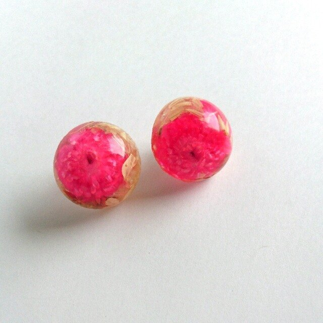 ♪ Earrings, which was confined dried flower (framboise)