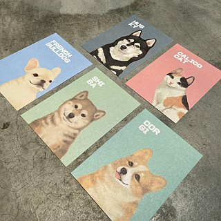 Pet friendly city wool paper postcard