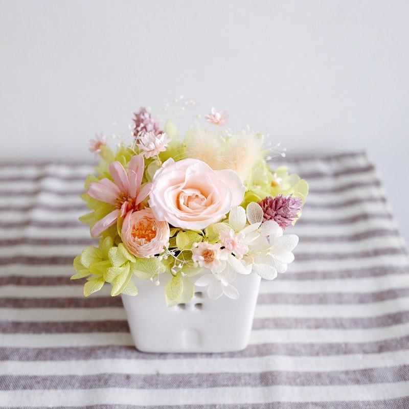 Or to paradise - not wither dry table pink - Preserved & dried flower little table flower (pink)