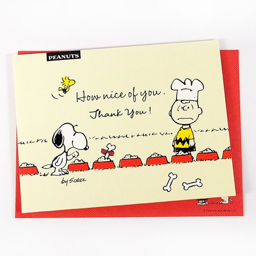 Snoopy I was fortunate to have you [Hallmark-Peanuts Snoopy - Stereo Card unlimited thanks]