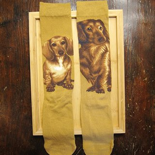 JHJ Design Canadian brand of high saturation knitting socks series dachshund dog (female) puppy dog ​​cute