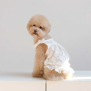Chacha.metyou white flower lace lotus leaf small dress dog hairy child