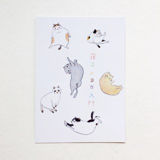 Cat's yoga beginner postcard