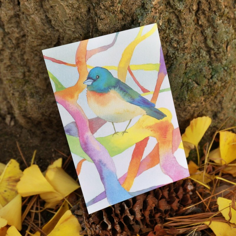 Lovely Animal watercolour postcard, Greeting card, Birthday card - rainbow bird