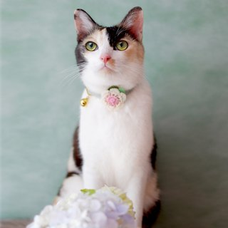 : MINI MALA :  breakaway cat collar with knitted flower