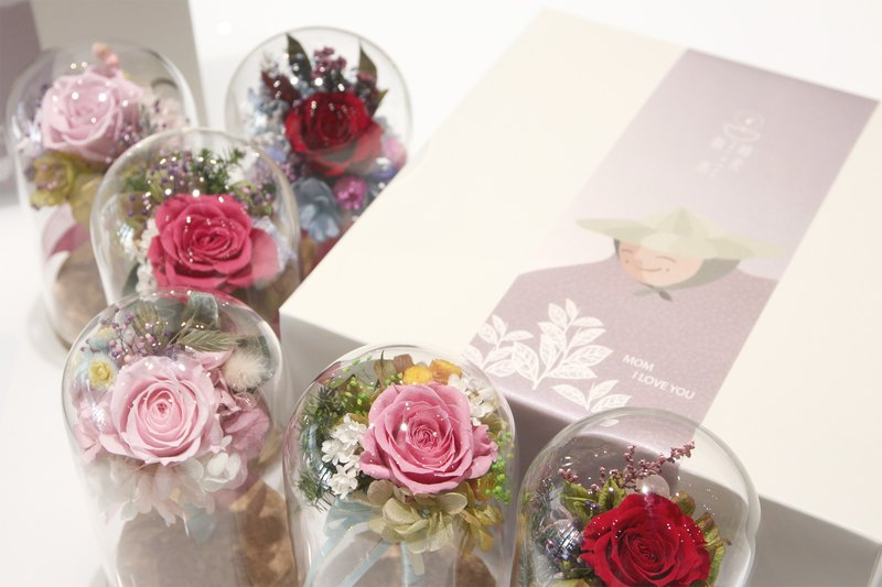 / Mother's Day Restricted / Leaflet Camellia Gift Box