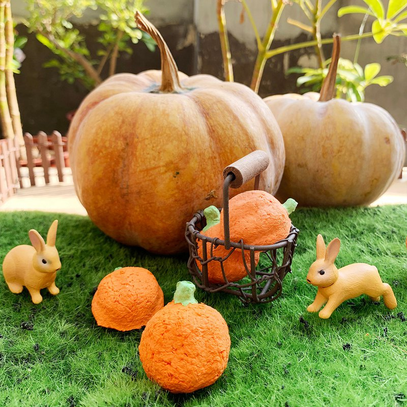 [Halloween limited] pumpkin shape seed ball (excluding flower / culture soil)