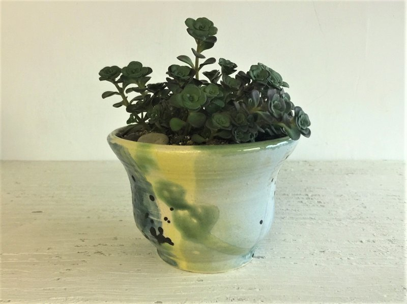 Ink color intertwined curve wide mouth pot_ pottery flower potted plant