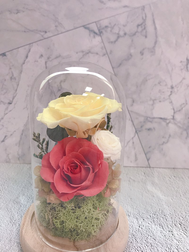 Immortal flower glass cover-summer fresh color